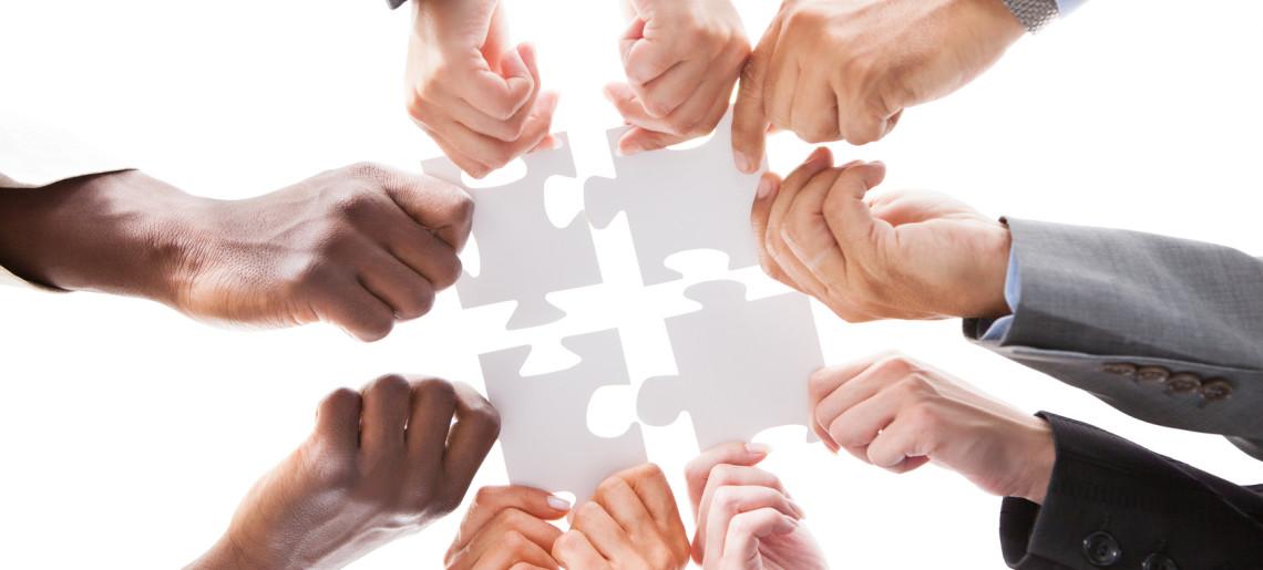 IMMAGINE Prolution; Il lavoro interdipendente